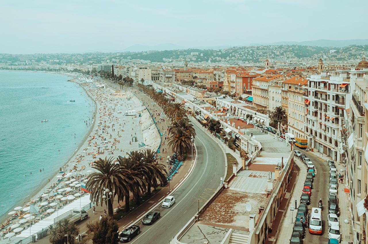 Images France Nice, Alpes-Maritimes Beach palm trees Coast Cities beaches Palms