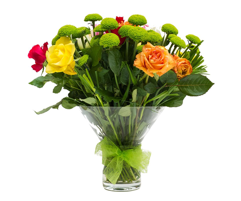 Bilder Blumensträuße Rose Blüte Chrysanthemen Vase Schleife Weißer hintergrund Sträuße Rosen Blumen