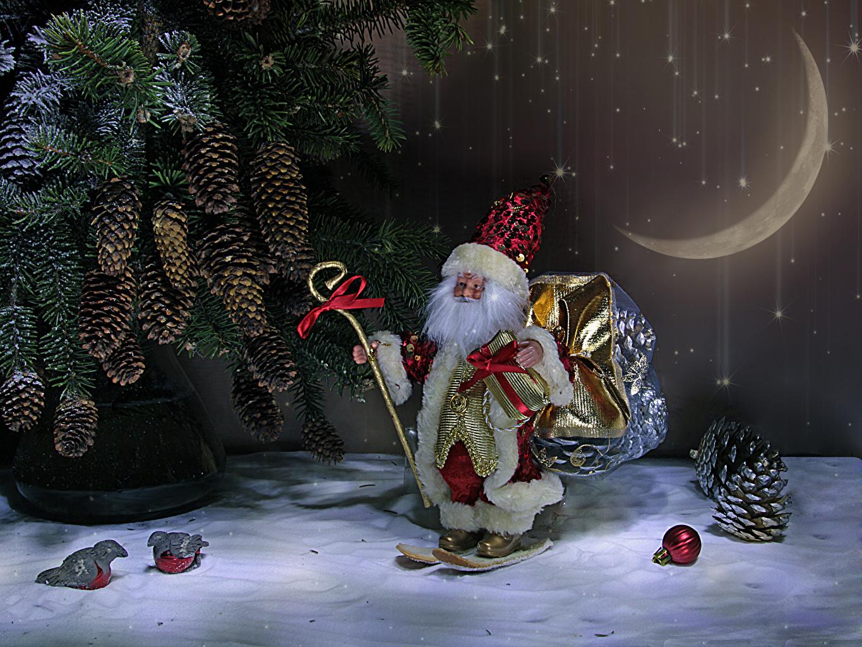 Foto Neujahr Weihnachtsmann Ast Zapfen Halbmond Mondsichel