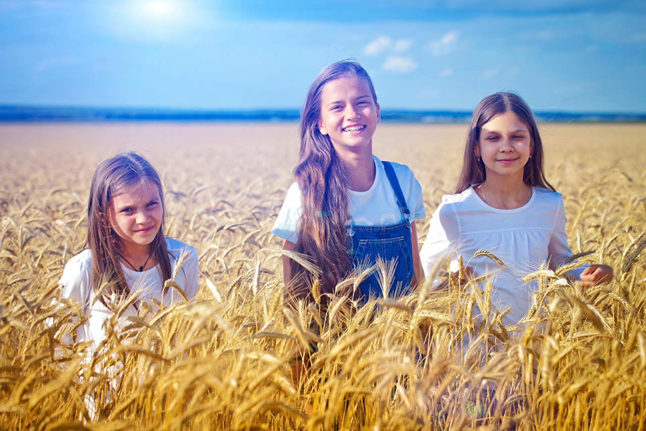 Bilder Kleine Mädchen Lächeln Kinder Ähre Acker Drei 3 Felder
