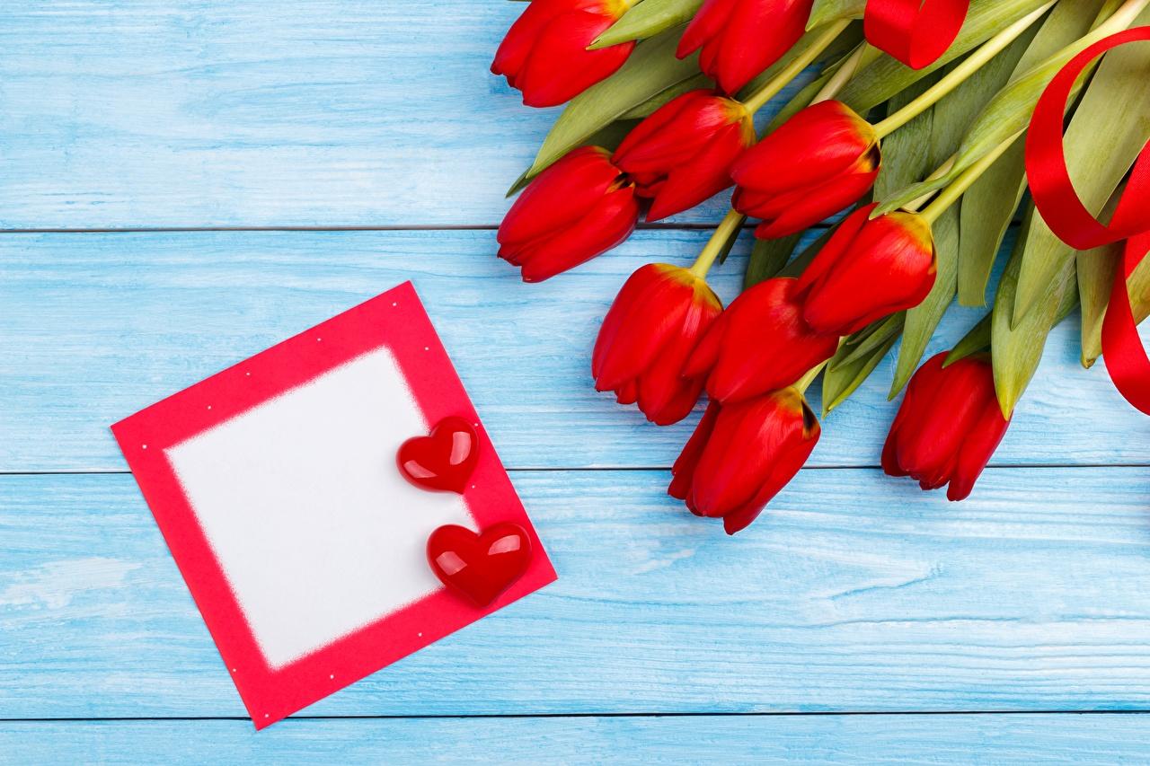 Bilder Valentinstag Herz Rot Tulpen Blüte Vorlage Grußkarte Blumen