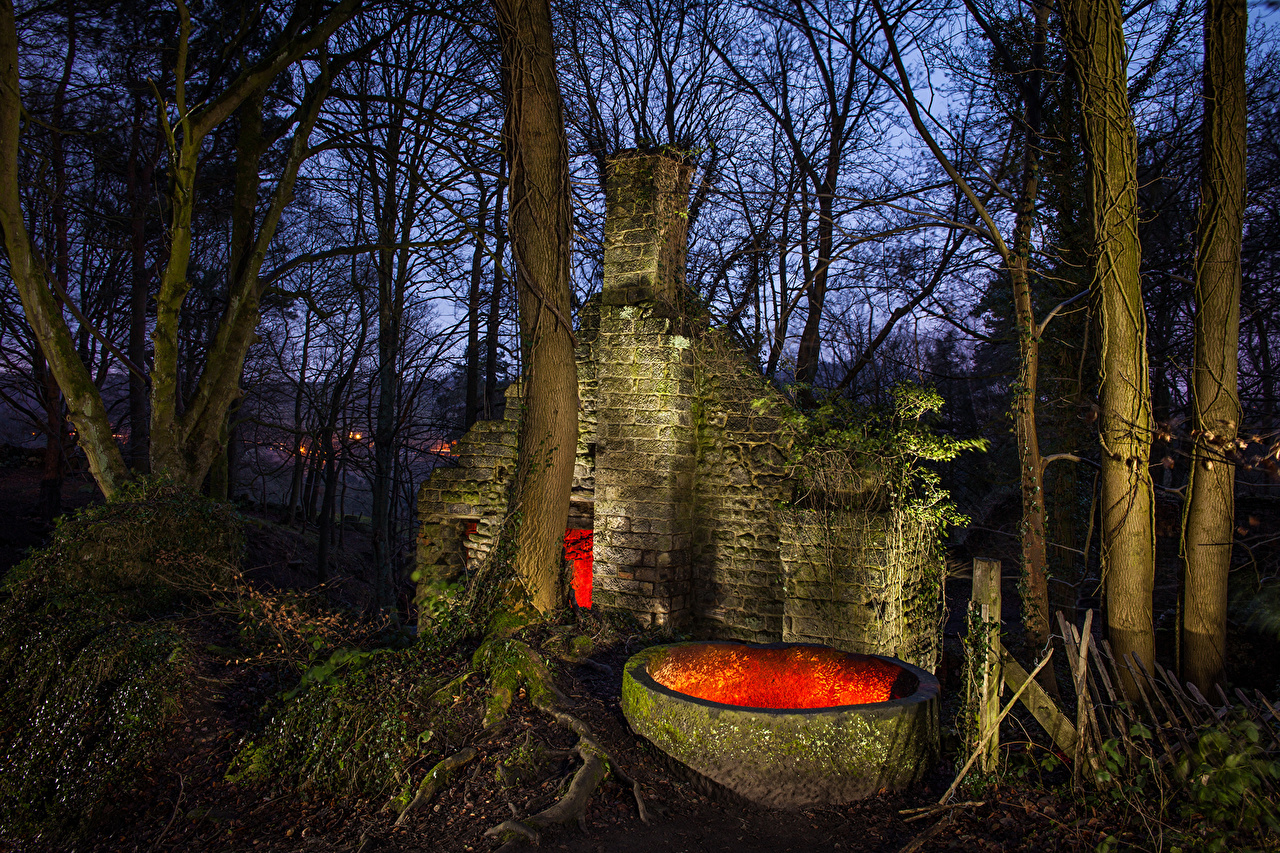 Pictures United Kingdom Lumsdale Matlock Nature Trunk tree Night Trees night time