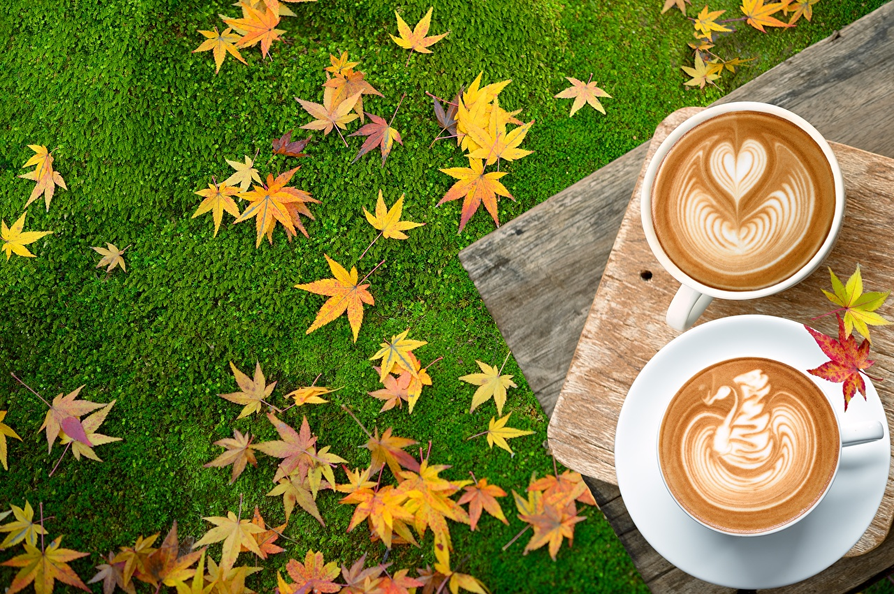 Images Foliage Heart Coffee Autumn Cappuccino Food Leaf