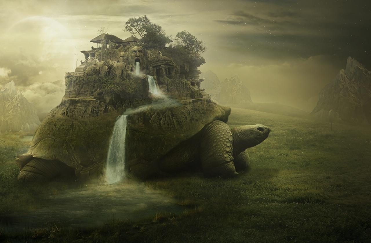 Photos Turtles Fantasy Waterfalls Fantastic world
