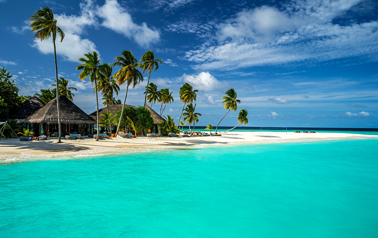 Wallpaper Maldives Bungalow Sea Nature Sky Tropics palm trees Coast