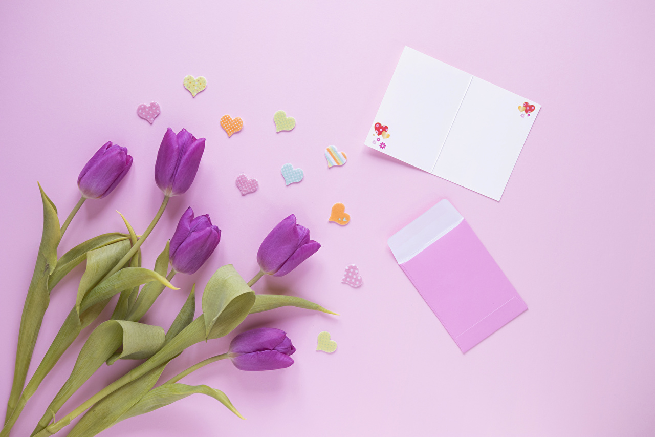 Image Heart Violet Tulips Flowers Template greeting card Colored background