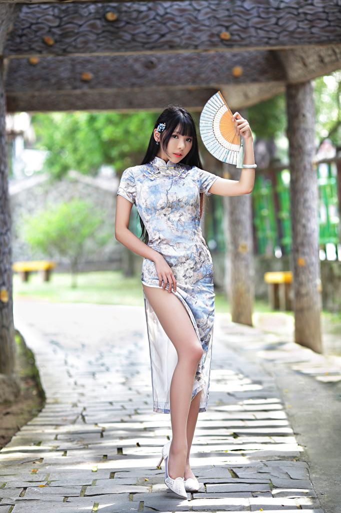 Bilder Brünette Fächer junge Frauen Bein Asiatische Kleid  für Handy Mädchens junge frau Asiaten asiatisches