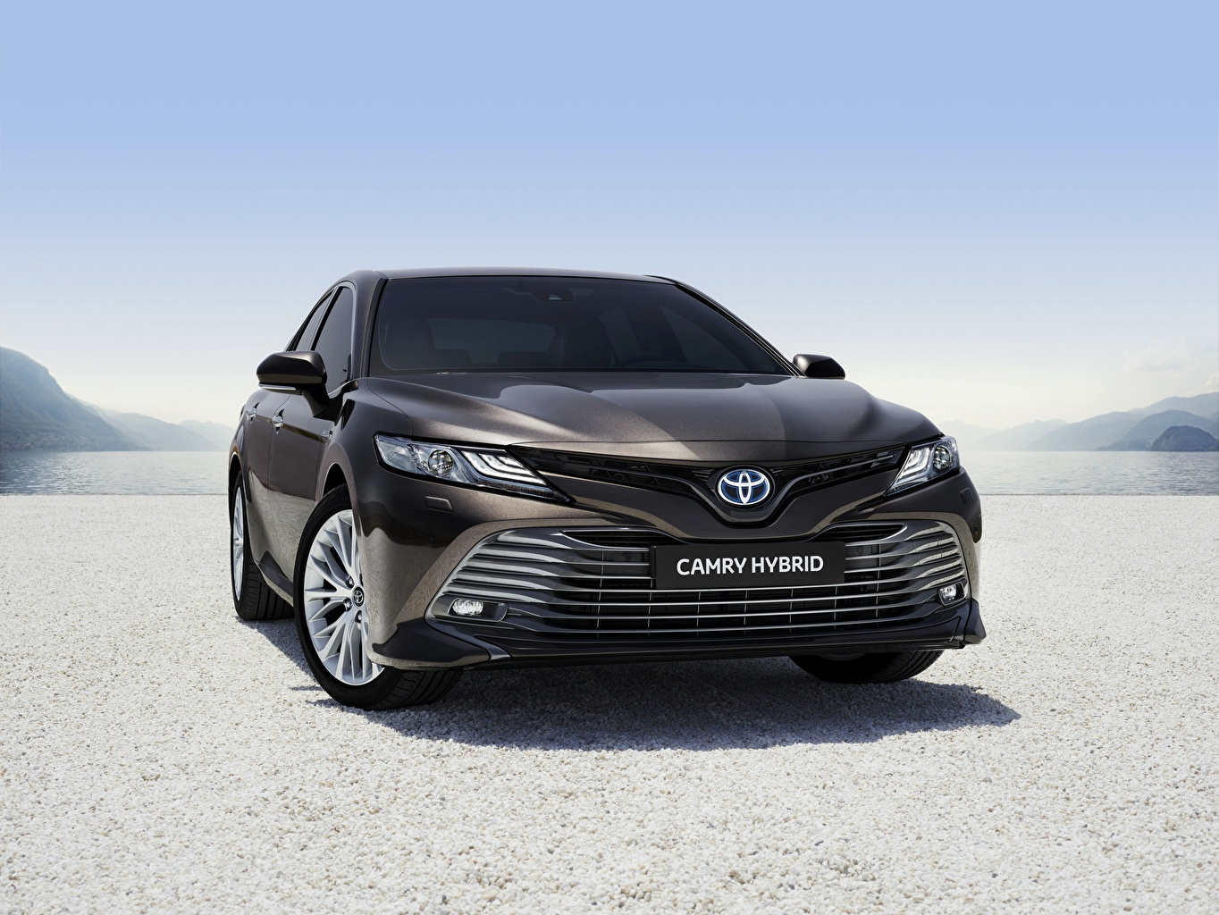 Images Toyota Camry Hybrid 2019 Hybrid vehicle Black Front automobile auto Cars
