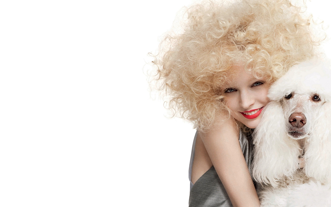 Pictures Poodle dog Blonde girl Girls Animals Dogs female young woman animal
