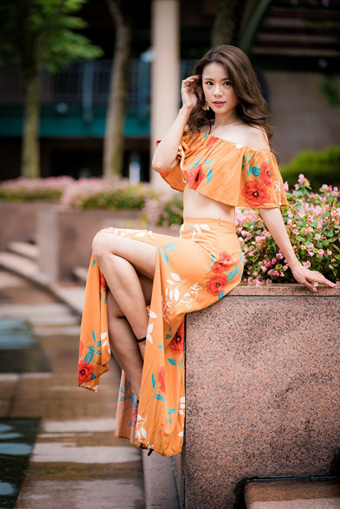 Bilder Bokeh Mädchens asiatisches Sitzend Blick  für Handy unscharfer Hintergrund junge frau junge Frauen Asiaten Asiatische sitzt sitzen Starren