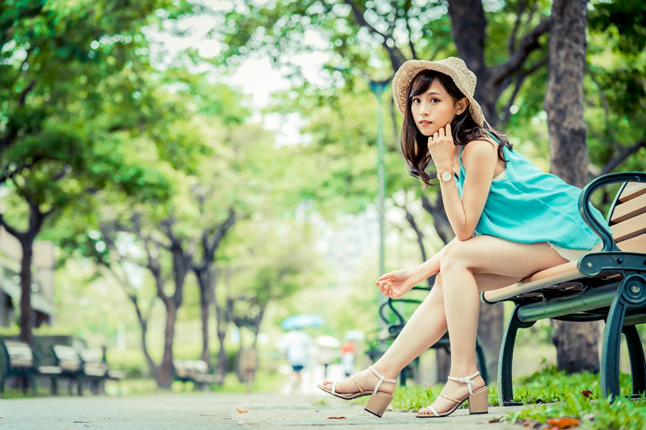 Fotos von Braunhaarige unscharfer Hintergrund Der Hut junge frau Bein asiatisches Sitzend Bank (Möbel) Blick Braune Haare Bokeh Mädchens junge Frauen Asiaten Asiatische sitzt sitzen Starren
