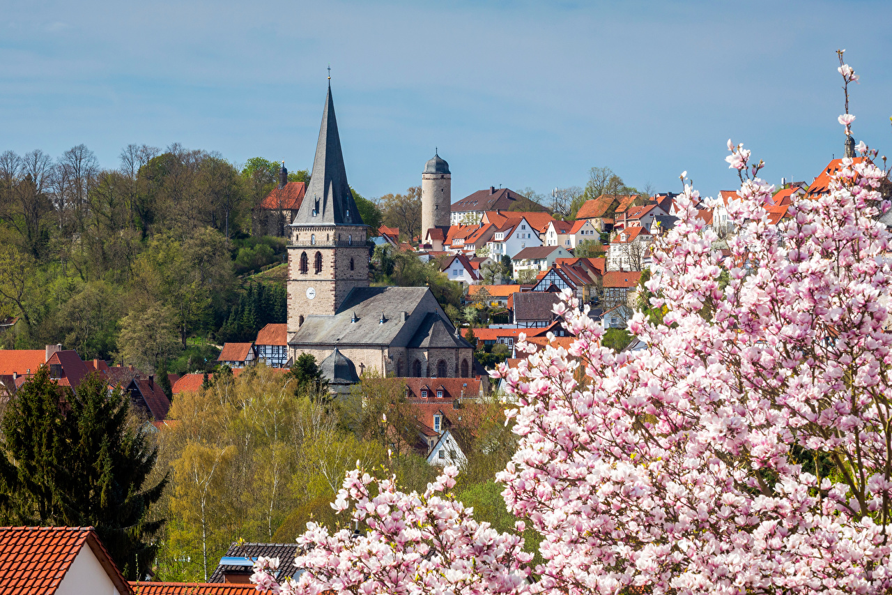 Pictures Germany towers Warburg Roof Spring Houses Cities Flowering trees Tower Building