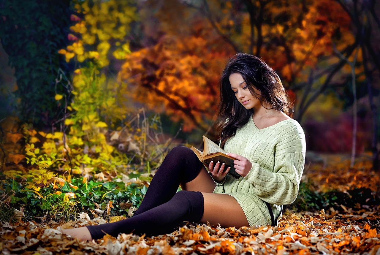 Fotos Blatt Brünette Long Socken Liest Herbst junge Frauen Bein Sweatshirt Buch Hand sitzen Blattwerk Lesen Mädchens junge frau sitzt Bücher Sitzend