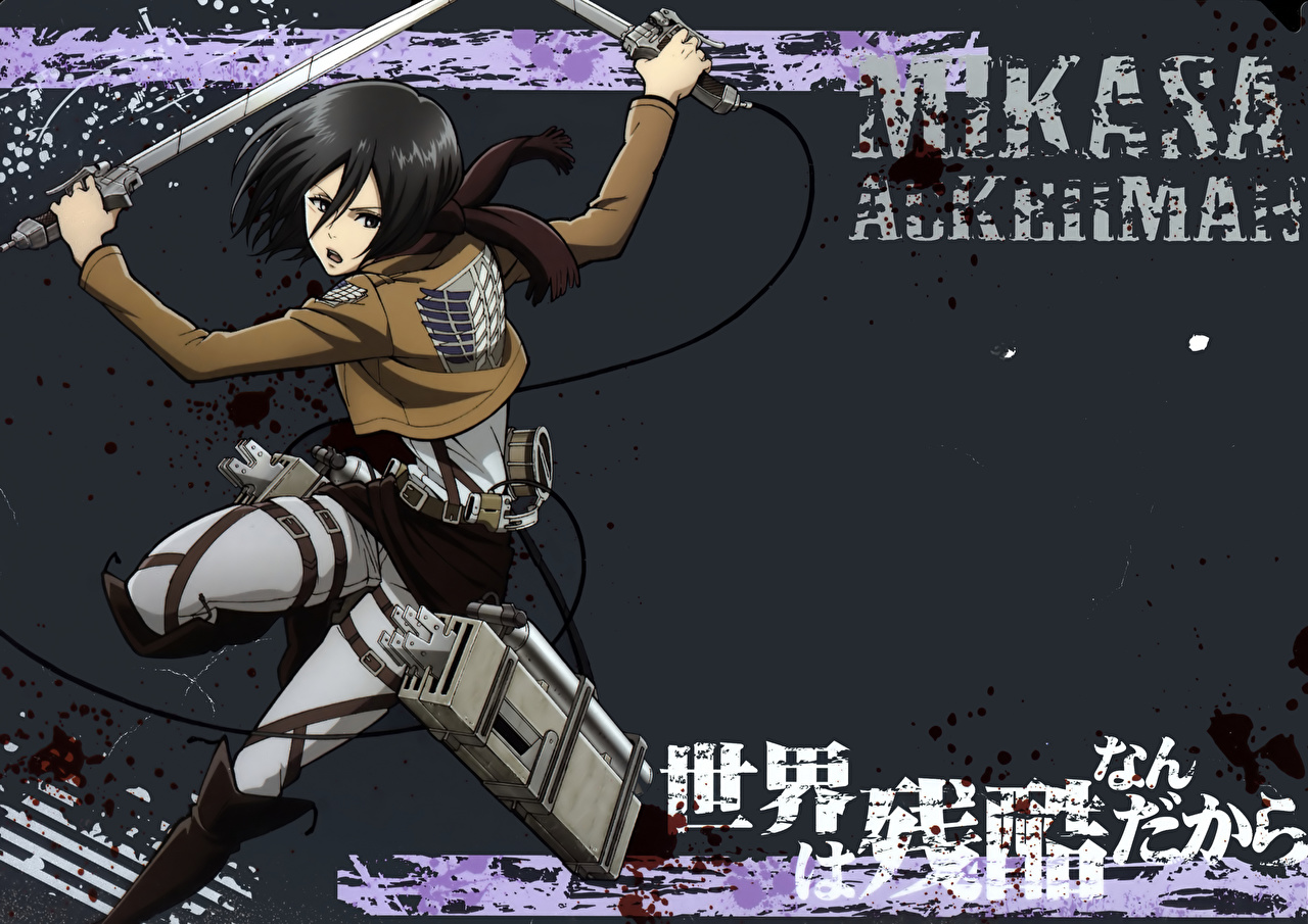 Wallpaper Attack On Titan Warriors Mikasa Ackerman Anime Young Woman