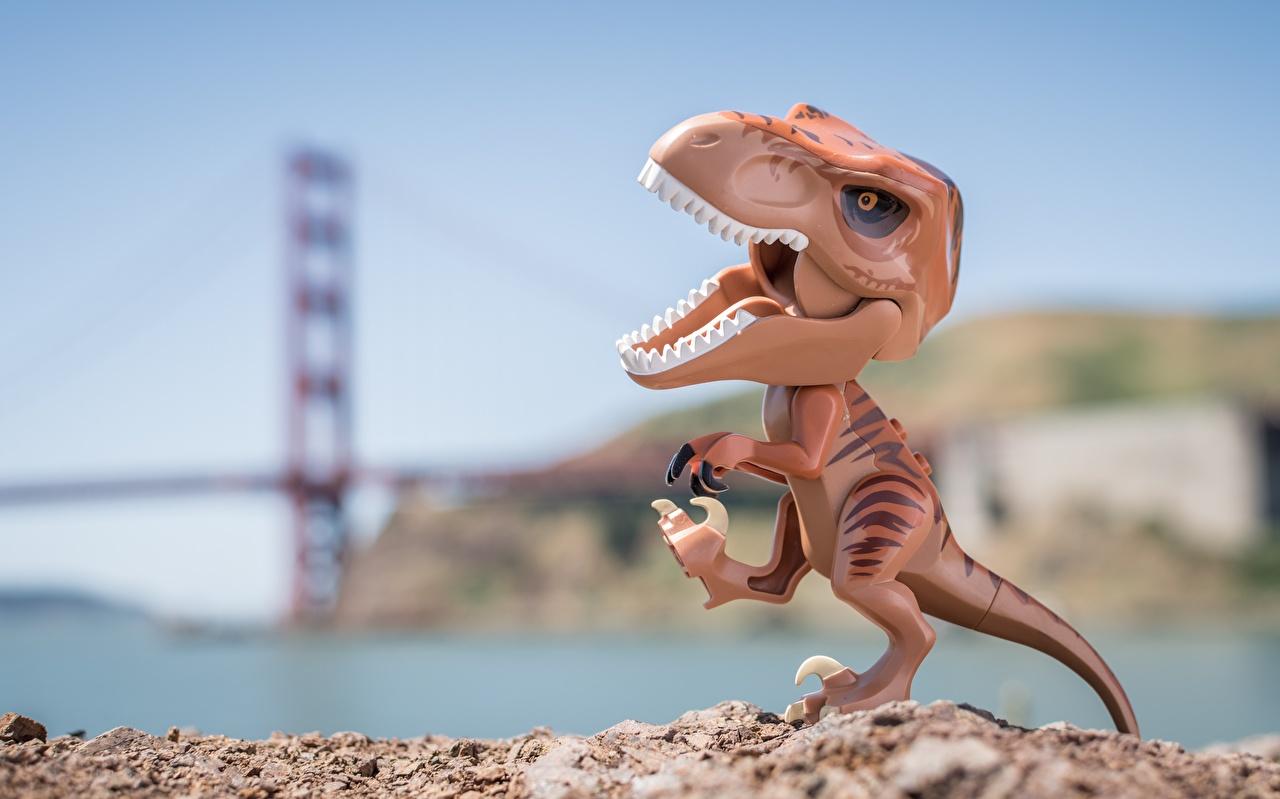 Wallpaper Tyrannosaurus rex Dinosaurs toy Closeup Toys
