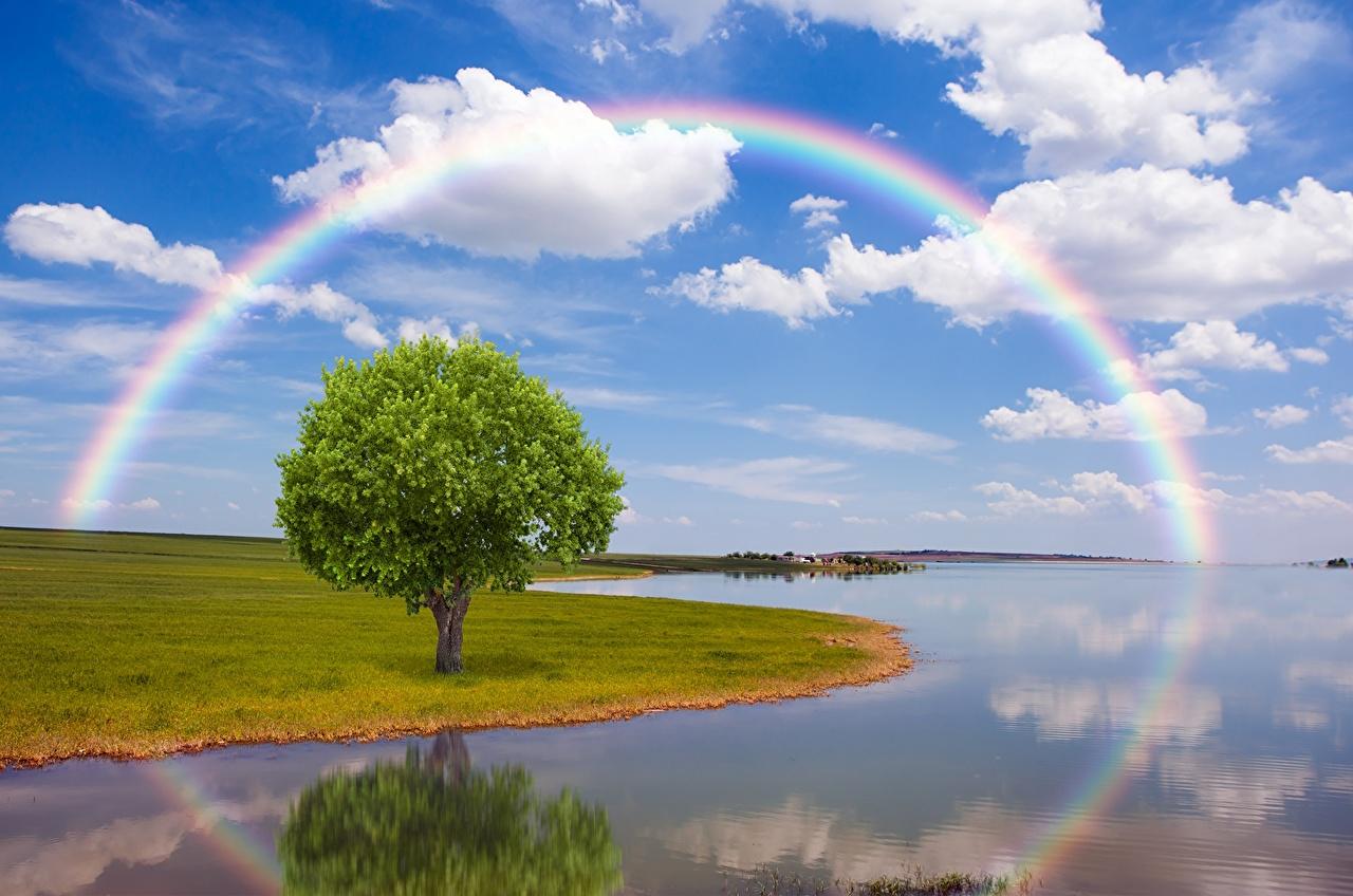 Ríos Cielo Arco iris árboles Nube río Naturaleza