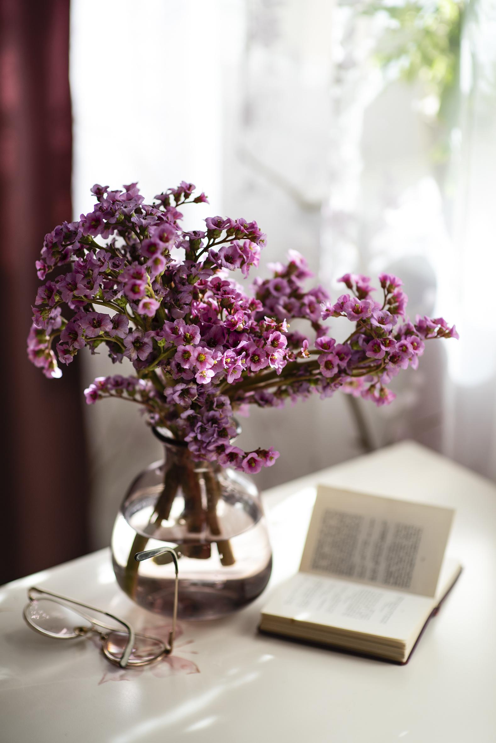 Desktop Hintergrundbilder Badan Blüte Vase Brille Bücher Stillleben  für Handy Blumen Buch