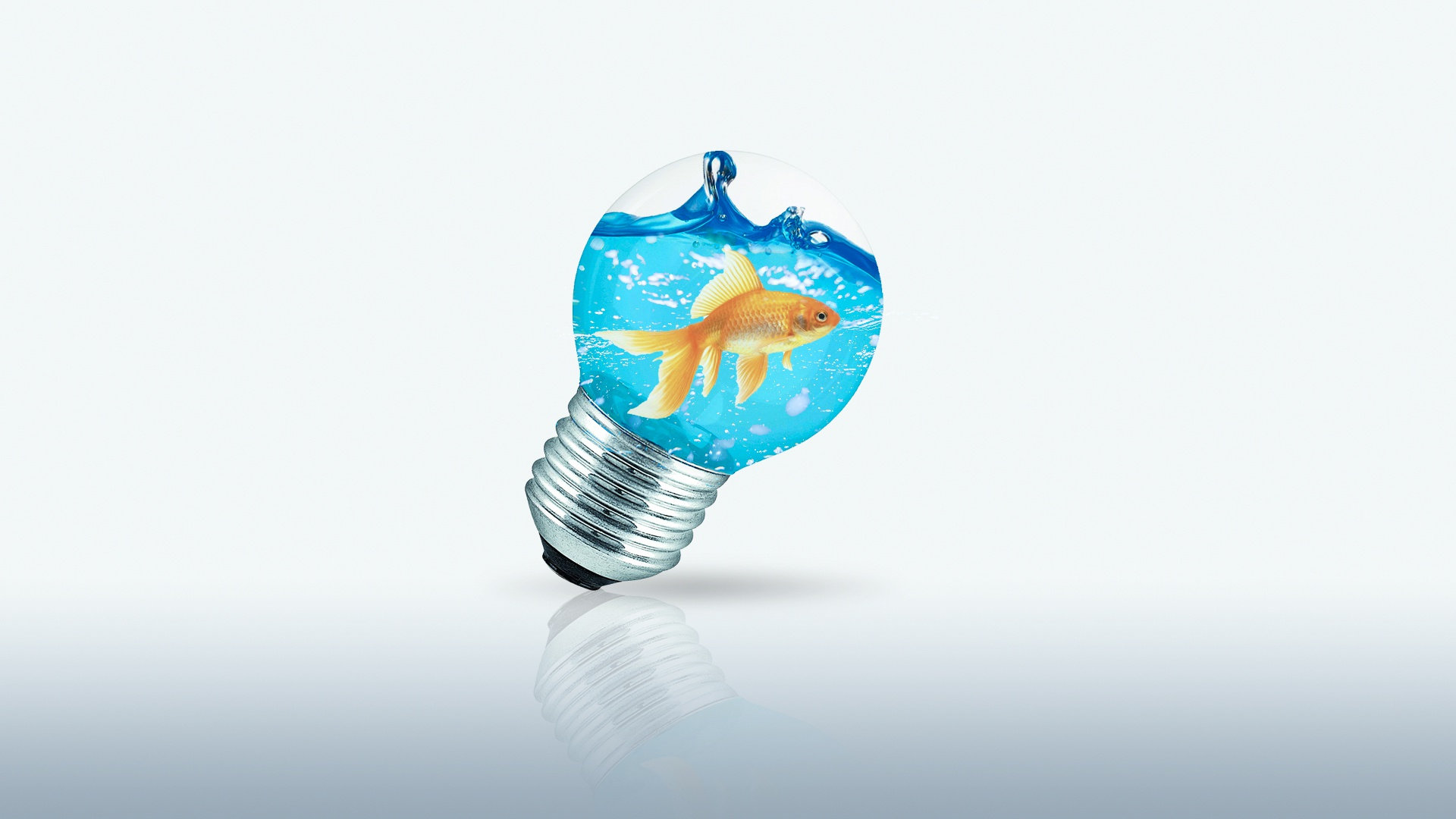 Wallpaper Fish Light bulb Creative Water