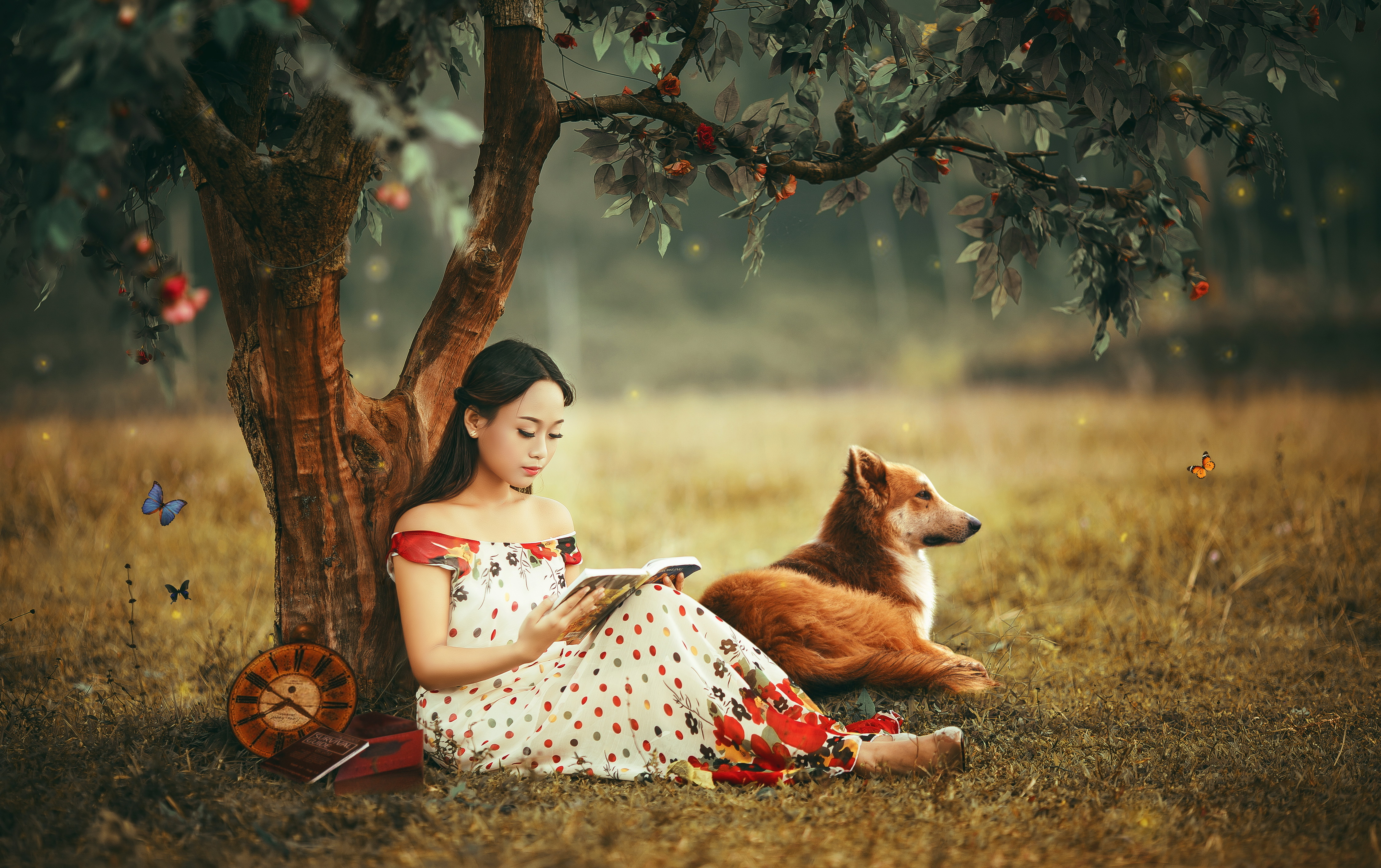 Pictures Dogs female Asiatic Trees Animals 4497x2828 dog Girls young woman Asian animal