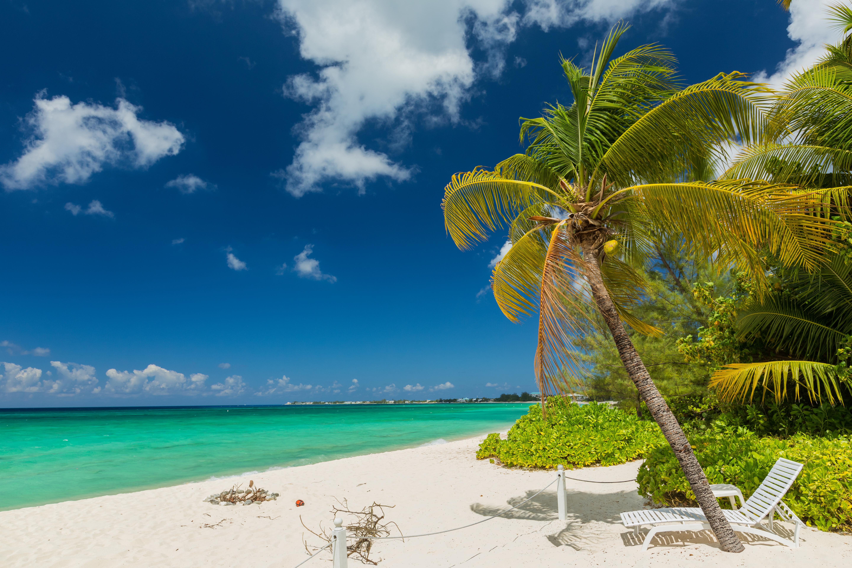 Wallpaper Grand Cayman Nature Sky Palms Tropics Coast Sunlounger Clouds 5760x3840 palm trees