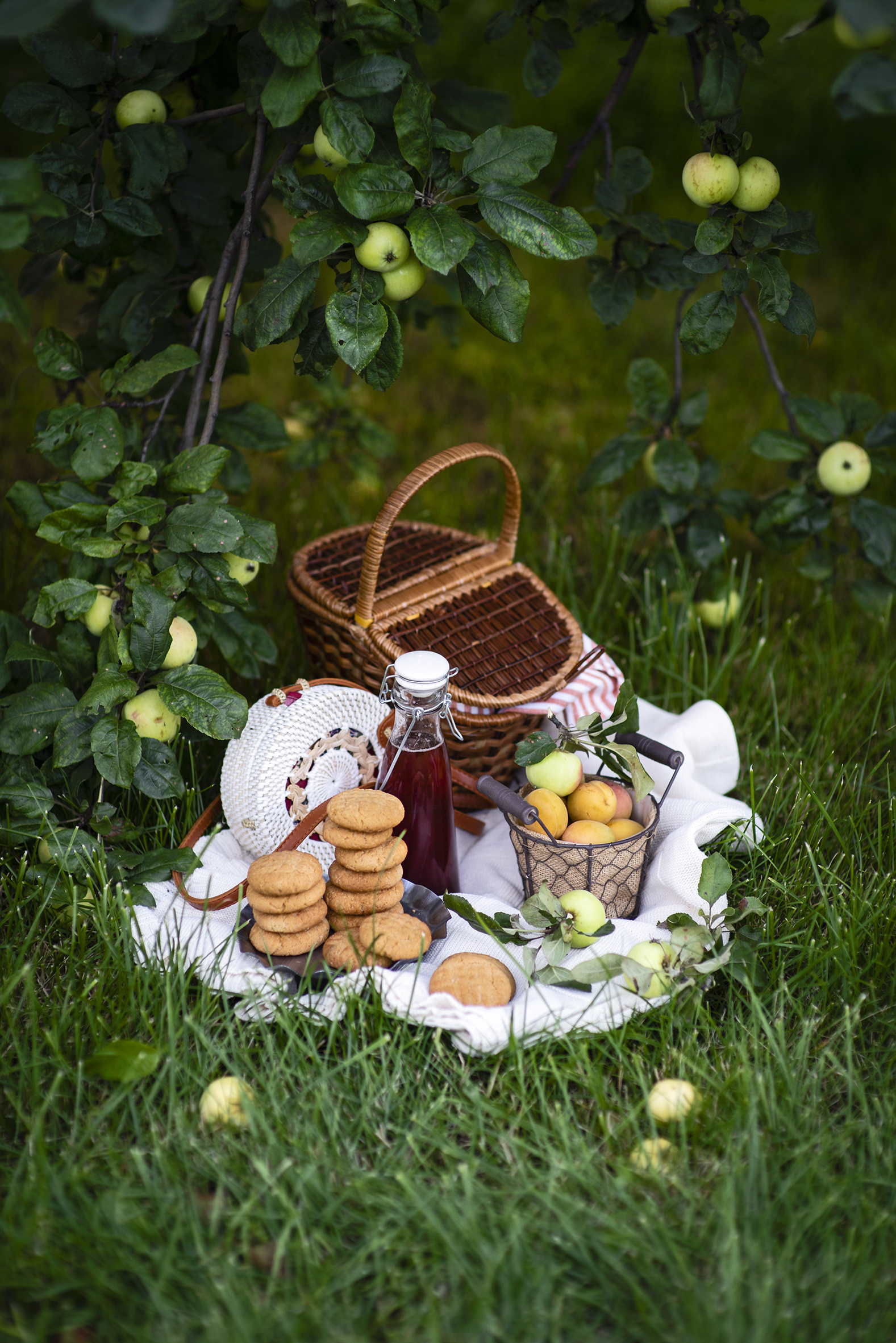Wallpaper Picnic Apricot Apples Wicker basket Food Cookies bottles  for Mobile phone Bottle