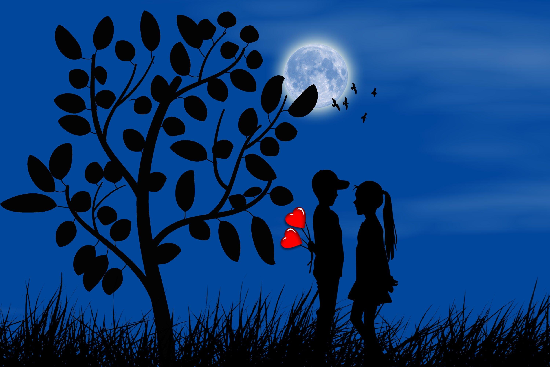 壁紙 愛 ハート 2 二つ 月 木 シルエット ダウンロード 写真