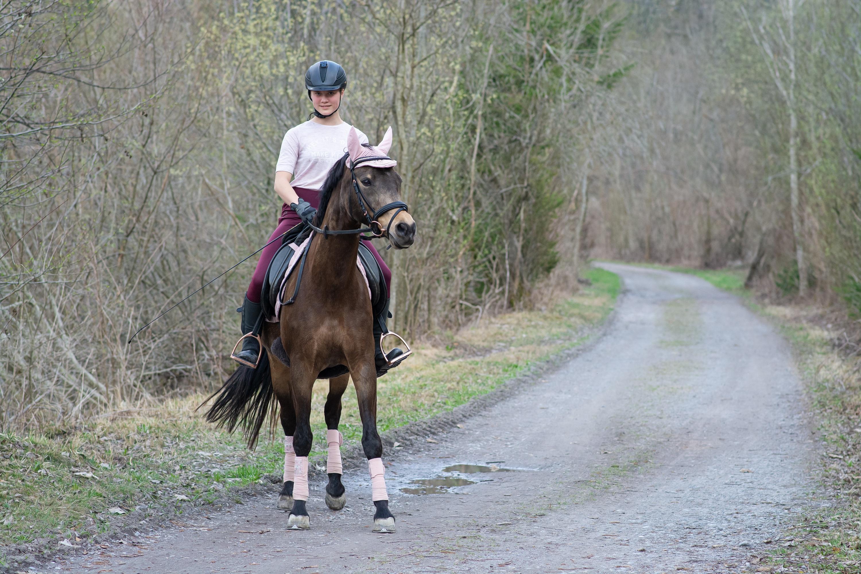 3000x2000 Carreteras Caballo Casco Sentado mujer joven, mujeres jóvenes, caballos, sentada Chicas