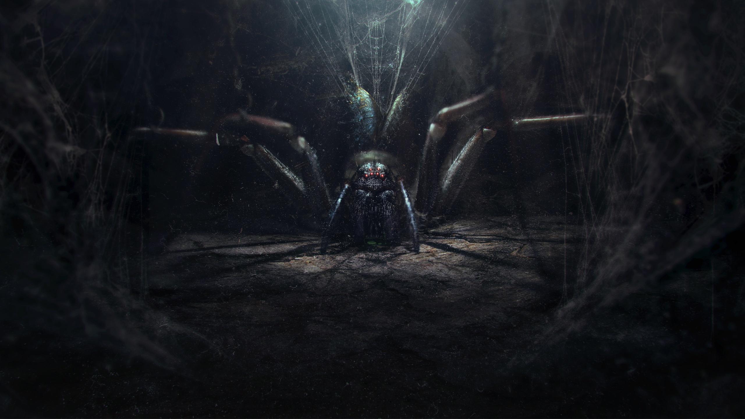 2560x1440 Illustrations pour des livres Araneaes Le Seigneur des anneaux Le Seigneur des anneaux: Le Retour du roi Cinéma Fantasy