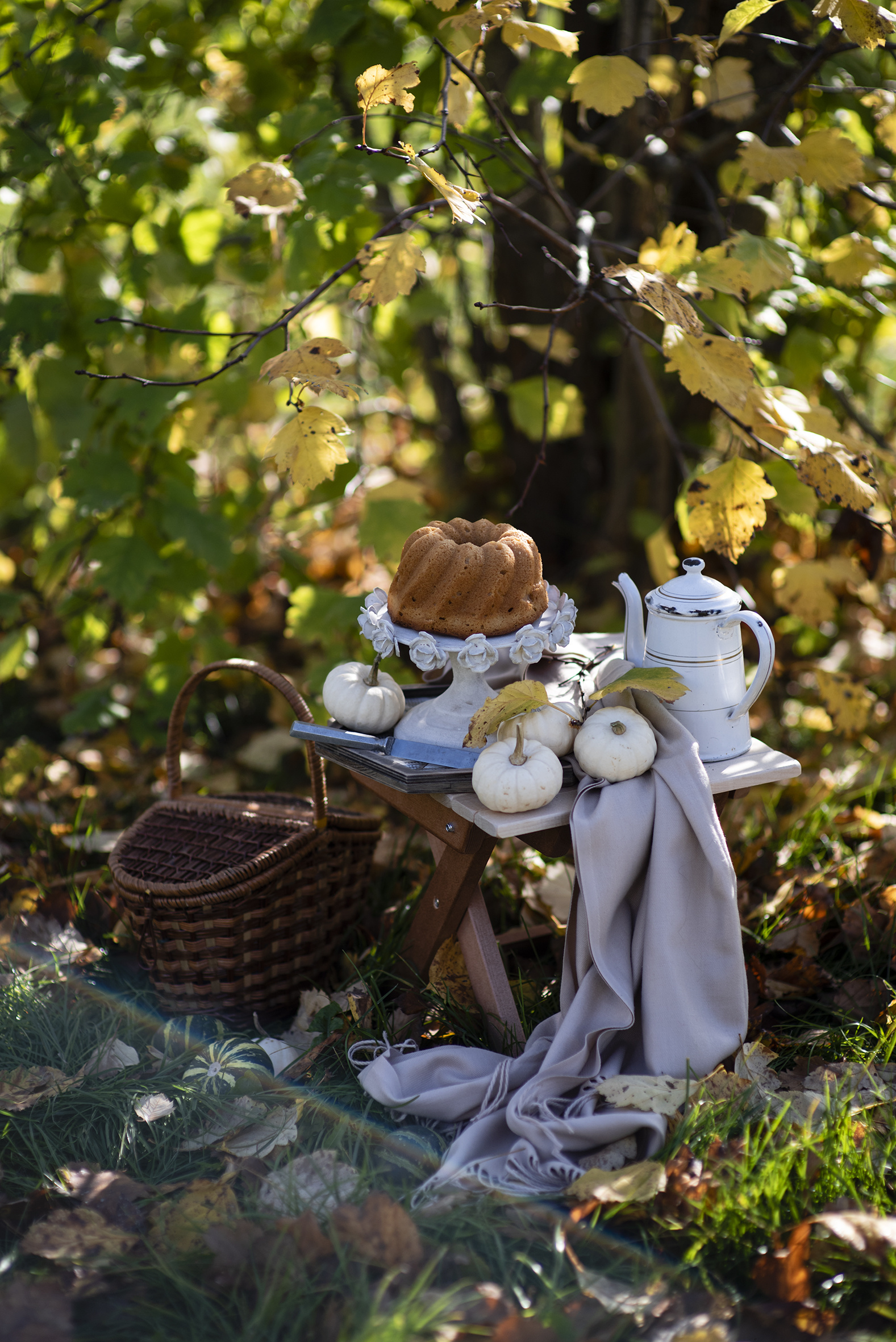 Picture Pumpkin Pound Cake Kettle Wicker basket Food  for Mobile phone