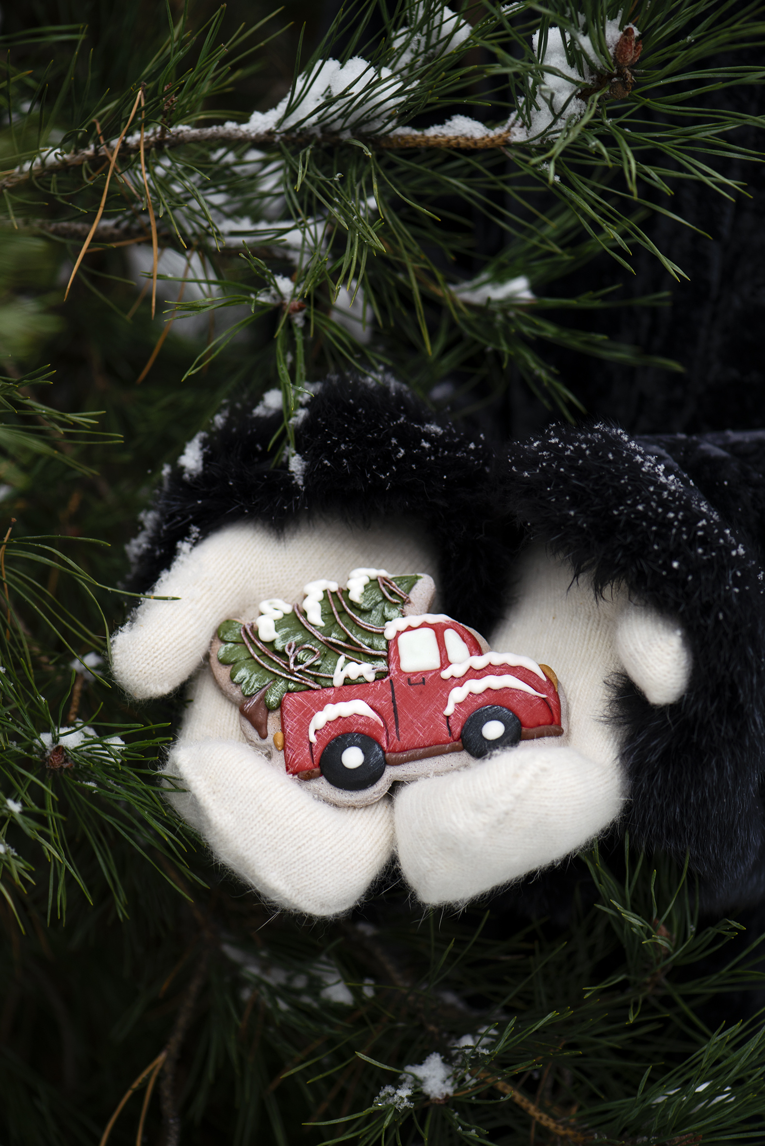 Photo New year Mittens New Year tree Branches  for Mobile phone Christmas Christmas tree