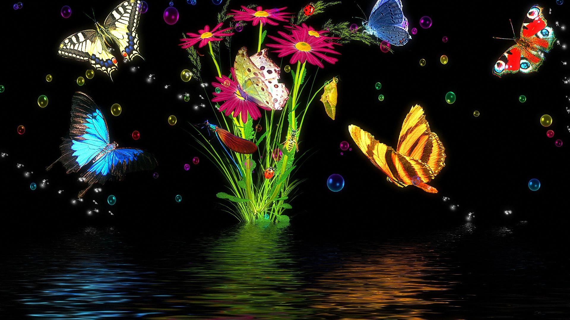 壁紙 1920x1080 蝴蝶 動物 下载 照片