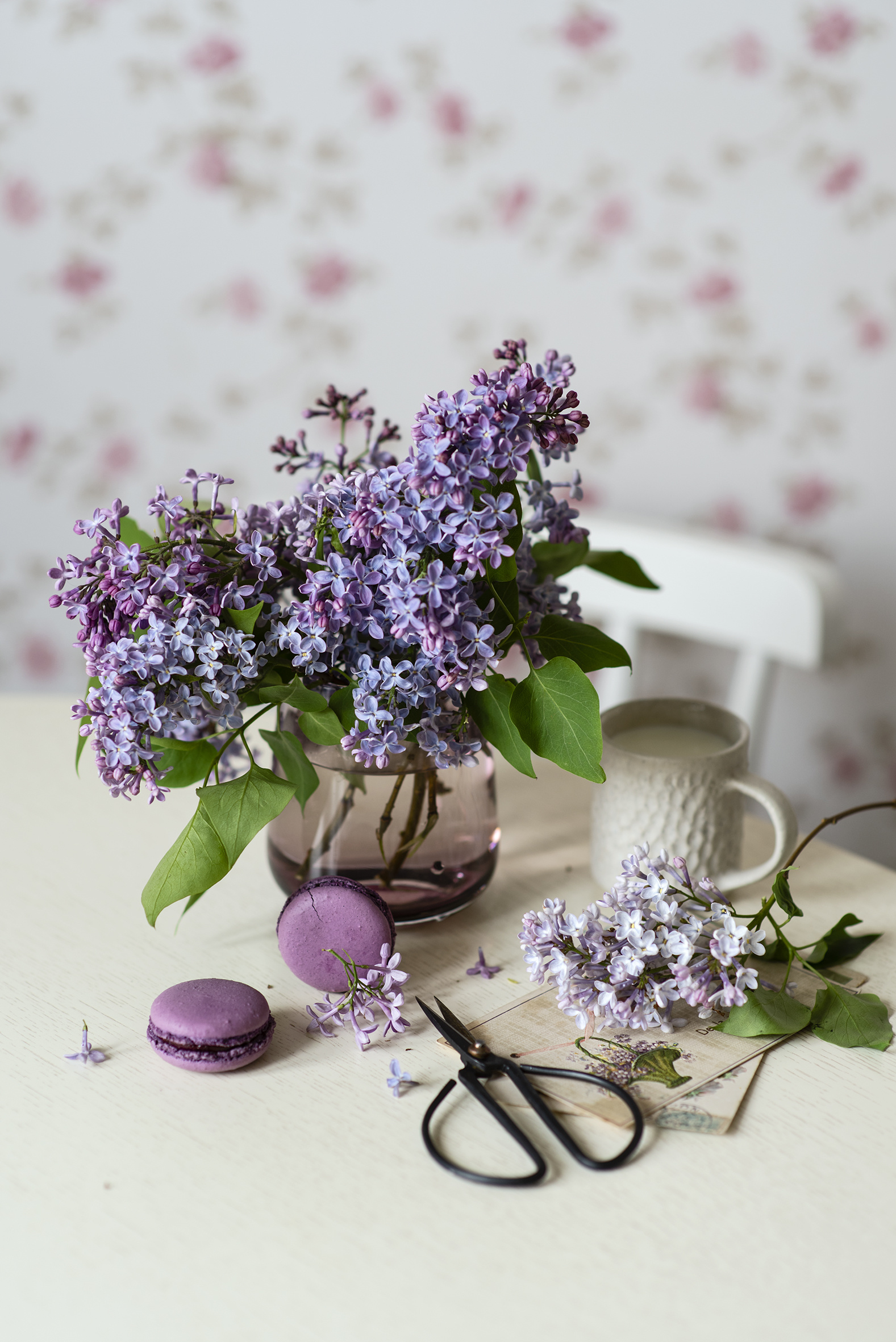 Photos french macarons Lilac flower Cup Vase Food Branches Still-life  for Mobile phone Macaron Flowers Syringa