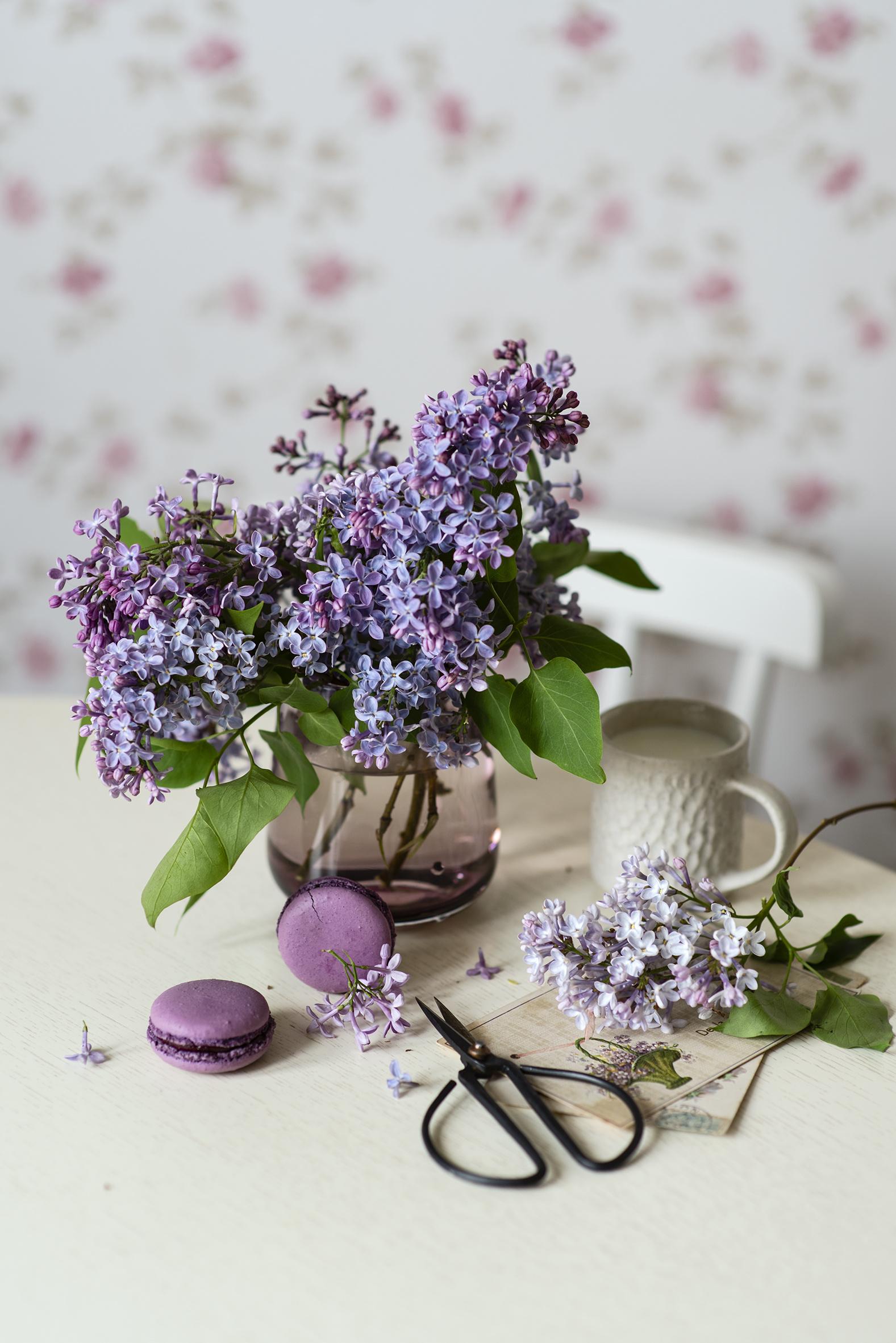 Bilder von macarons Blüte Flieder Ast Vase Tasse Lebensmittel Stillleben  für Handy Macaron Blumen Syringa das Essen