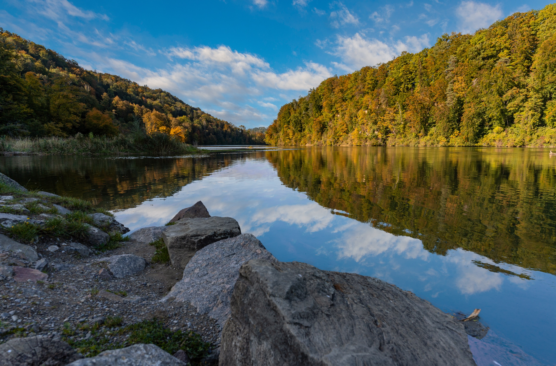 Обои для рабочего стола Швейцария Rhine осенние Природа лес Реки Камень Осень Леса река речка Камни
