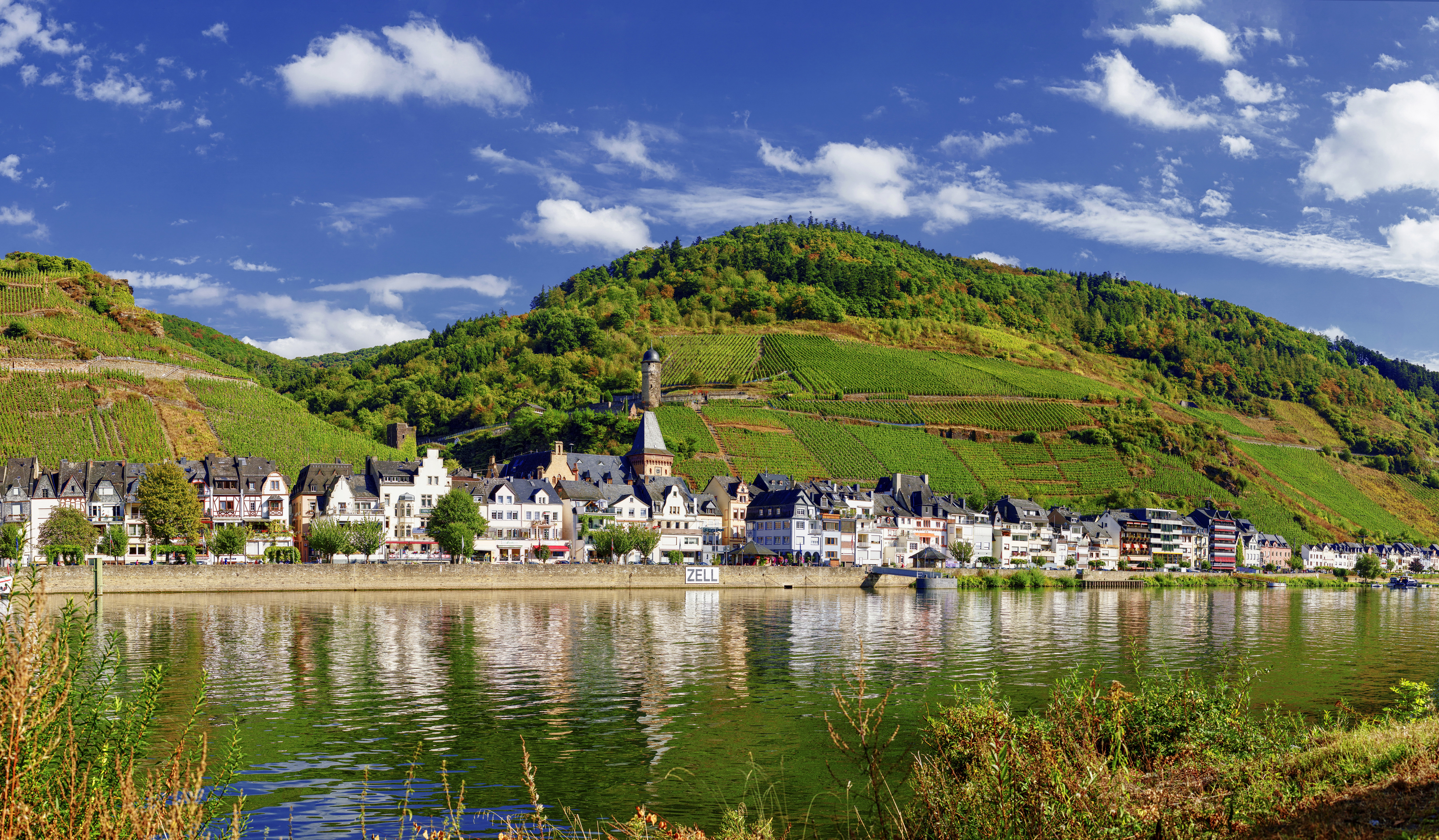 Wallpaper Germany Zell (Mosel) Hill Fields Rivers Cities Building river Houses