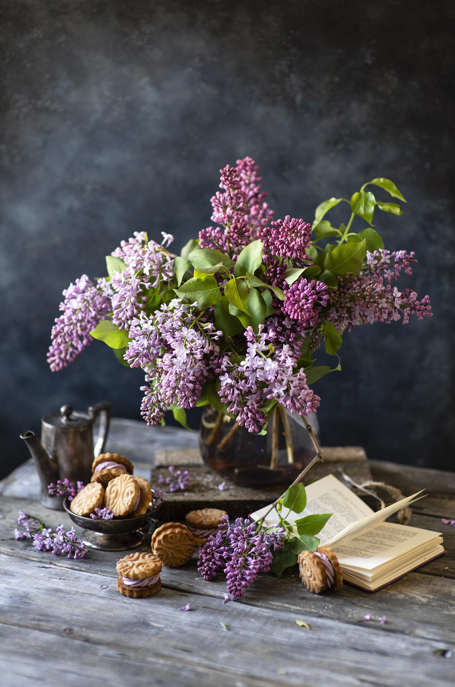 Desktop Hintergrundbilder Blüte Flieder Ast Kekse Bücher das Essen Stillleben  für Handy Blumen Syringa Buch Lebensmittel