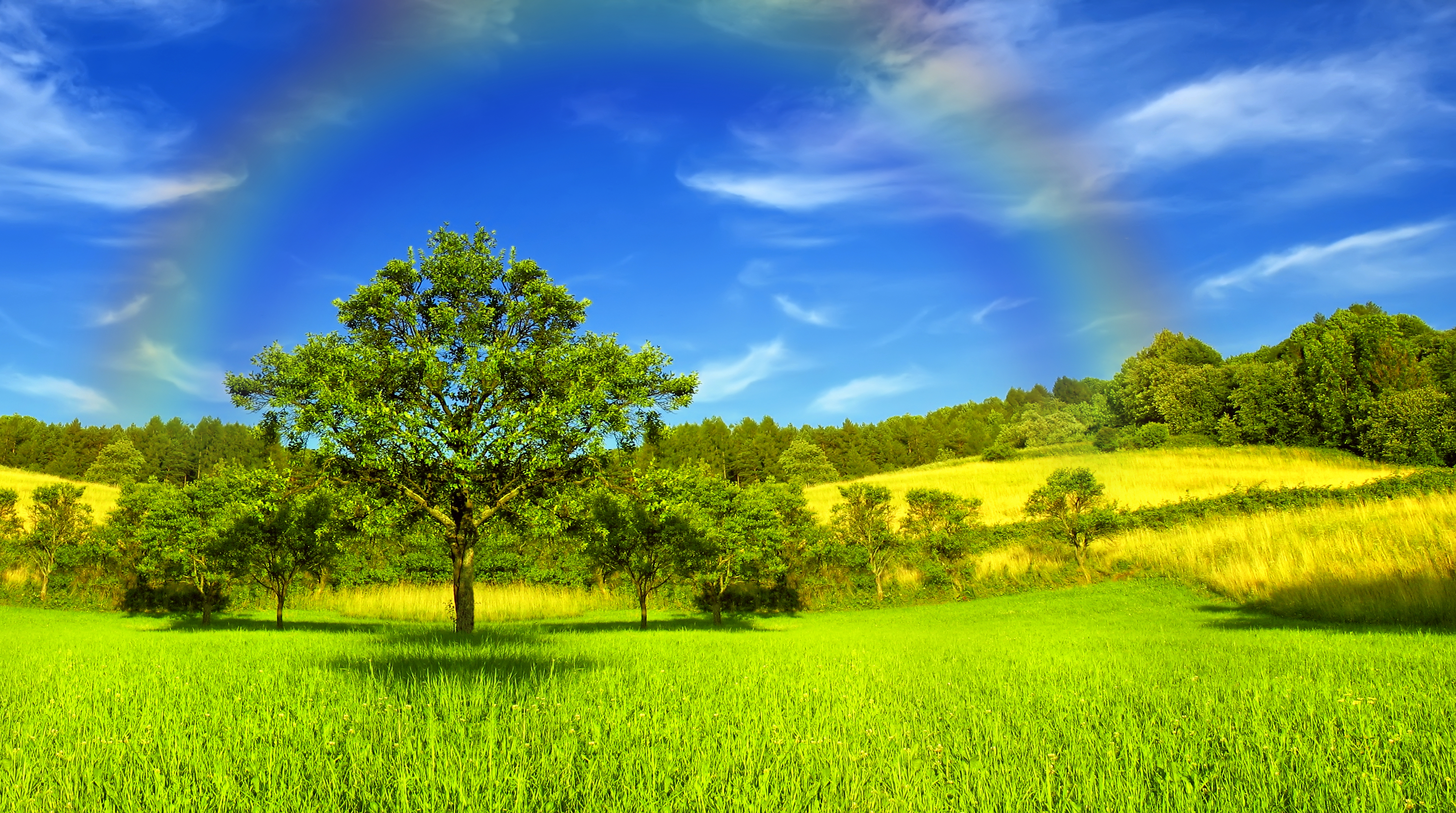 Image Summer Nature Rainbow Sky Grass Trees 3580x2000