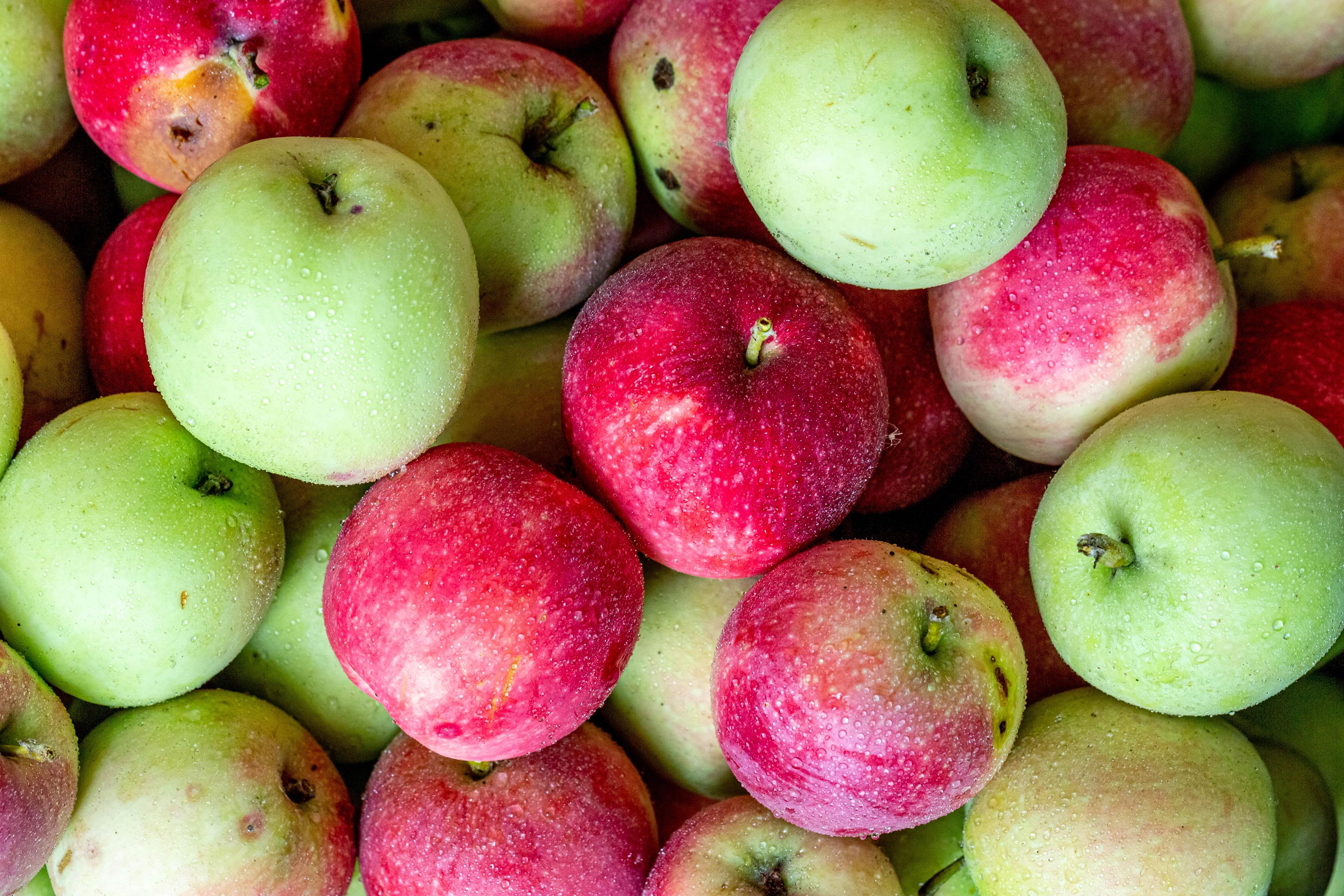 Обои для рабочего стола Яблоки Продукты питания вблизи Еда Пища Крупным планом