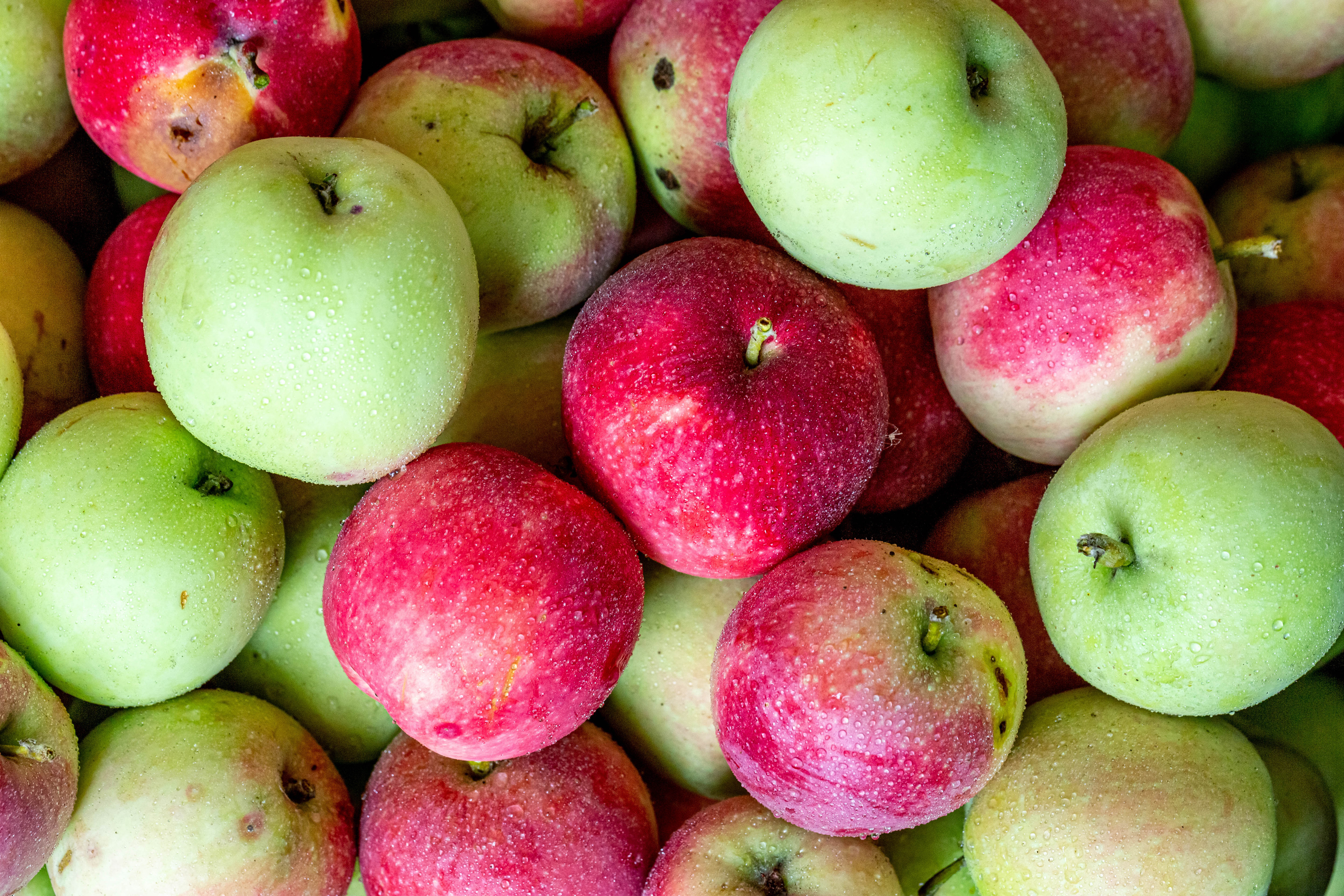 Image Apples Food Closeup