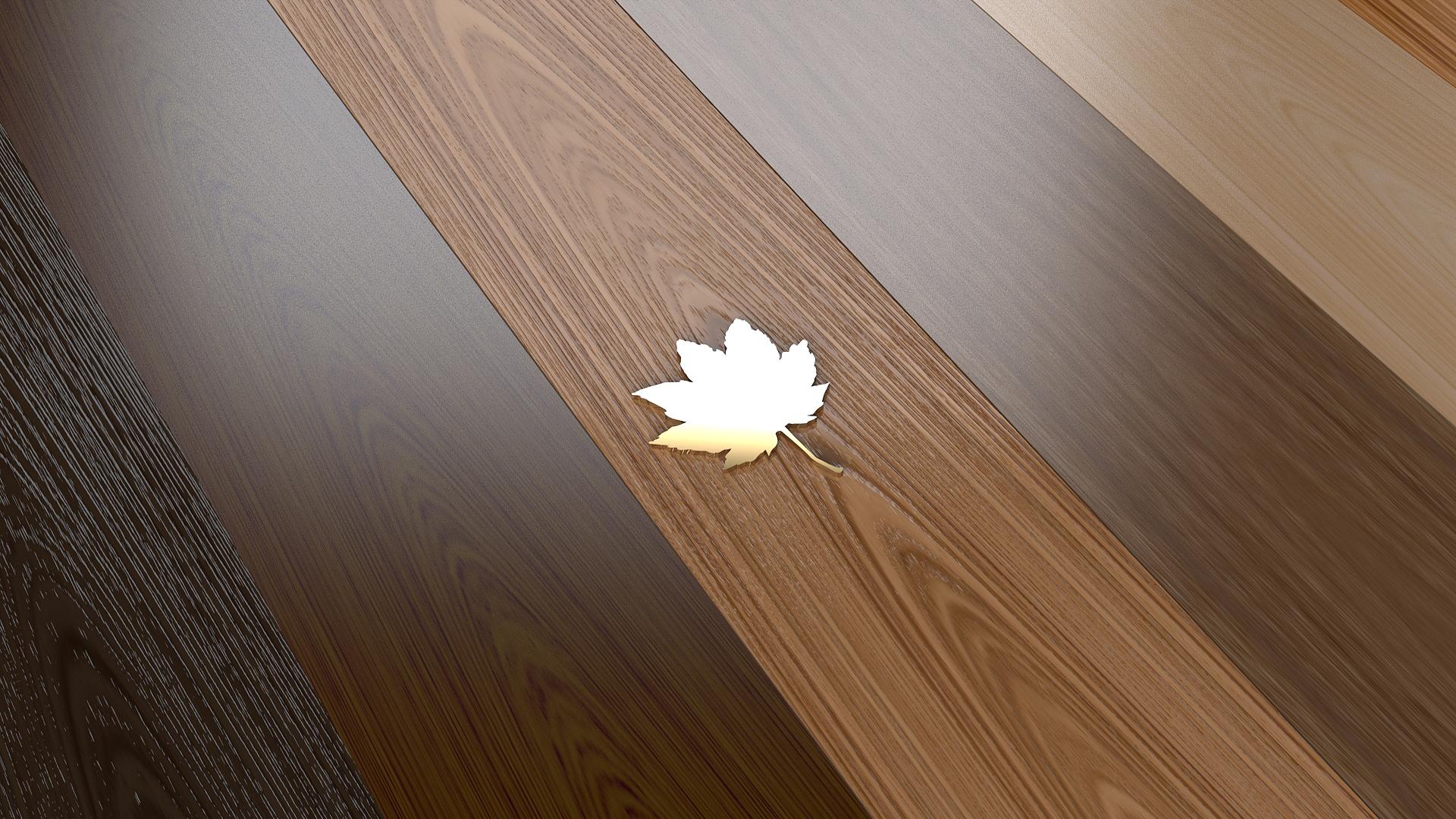 壁紙 19x1080 木の葉 フローリング カエデ ダウンロード 写真
