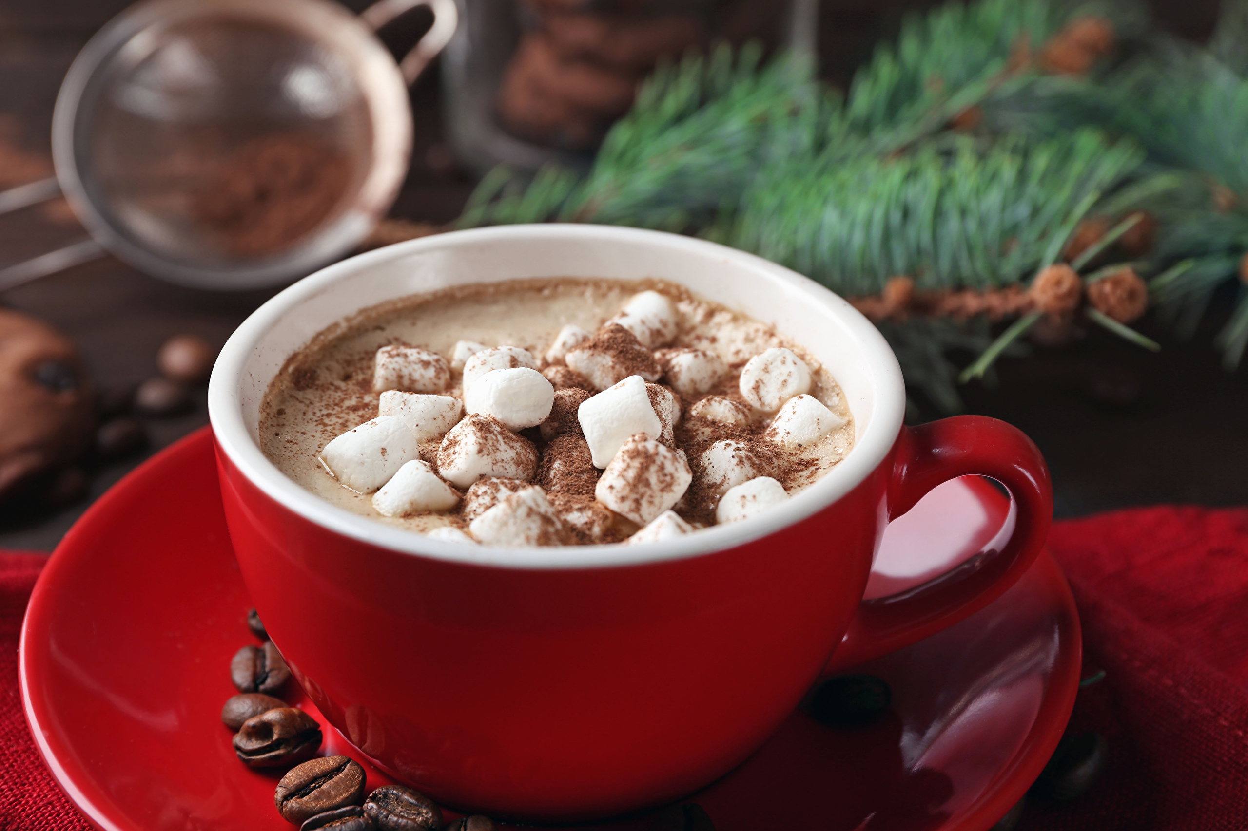 Photos Marshmallow Hot chocolate drink Cup Food Saucer drink 1920x1280 cocoa Drinks