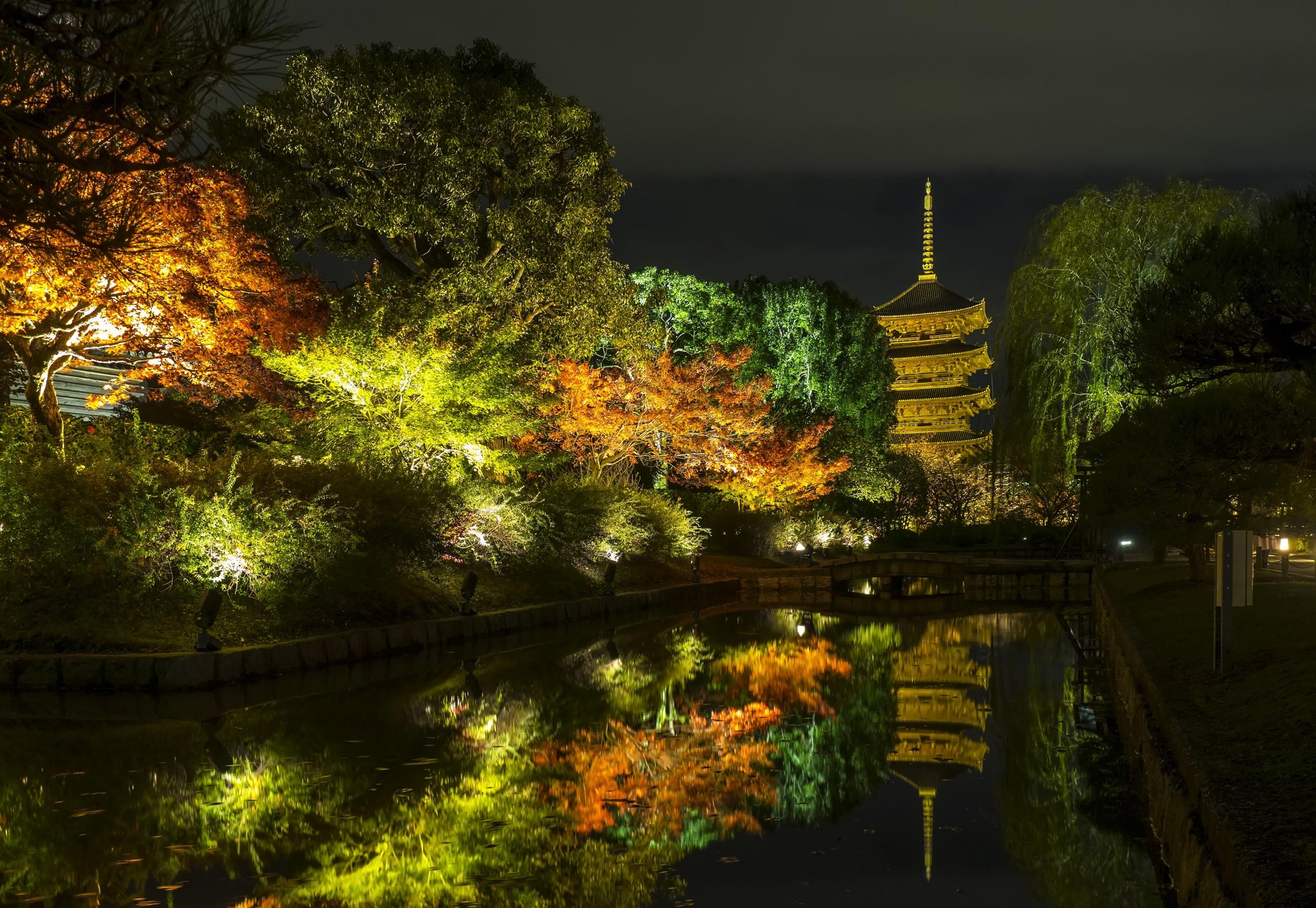 2560x1766、日本、京都市、秋、公園、池、木、夜、街灯、自然