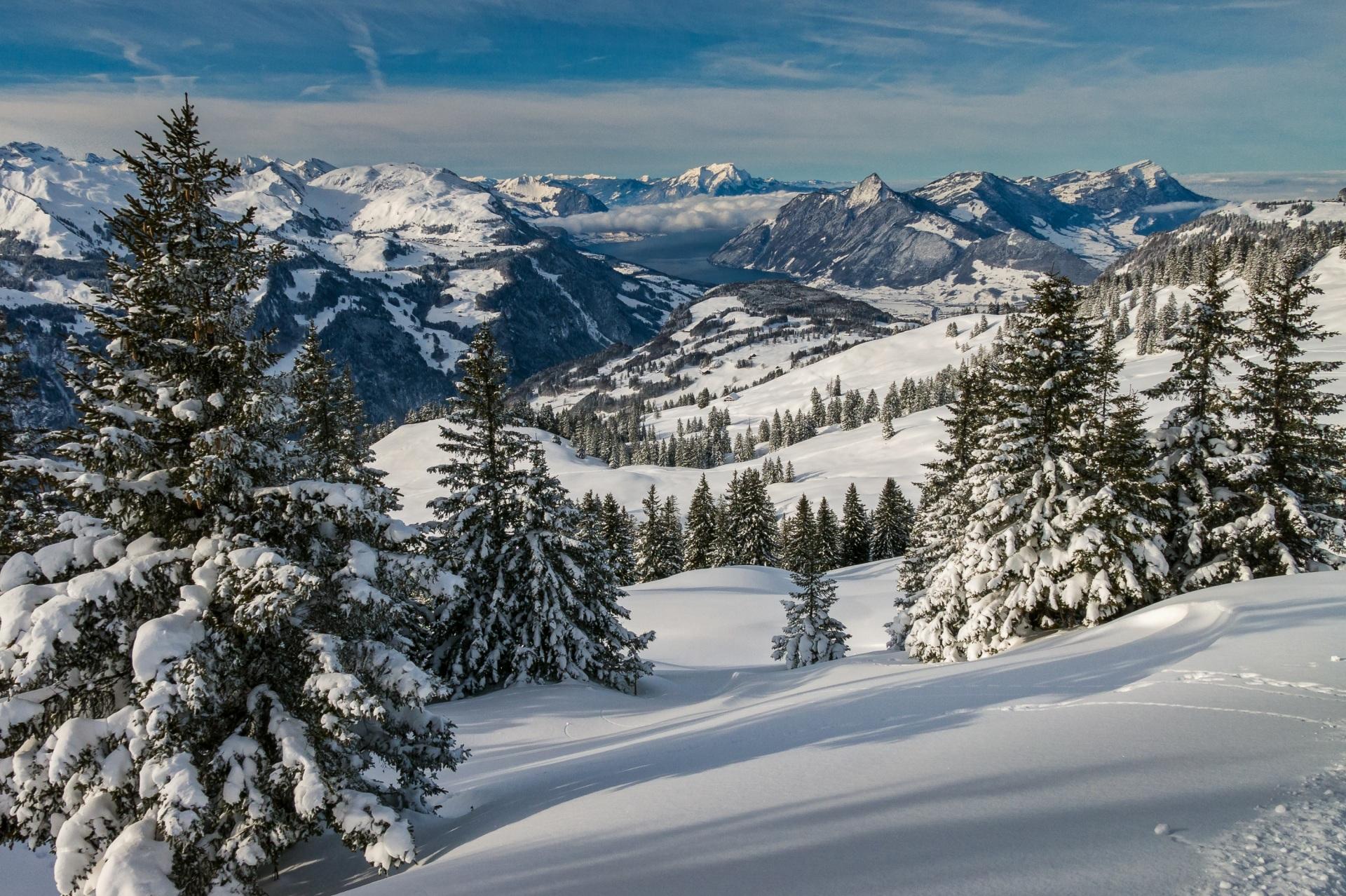Sfondi Del Desktop Alpi Svizzera Schwyz Abete Natura 1920x1278
