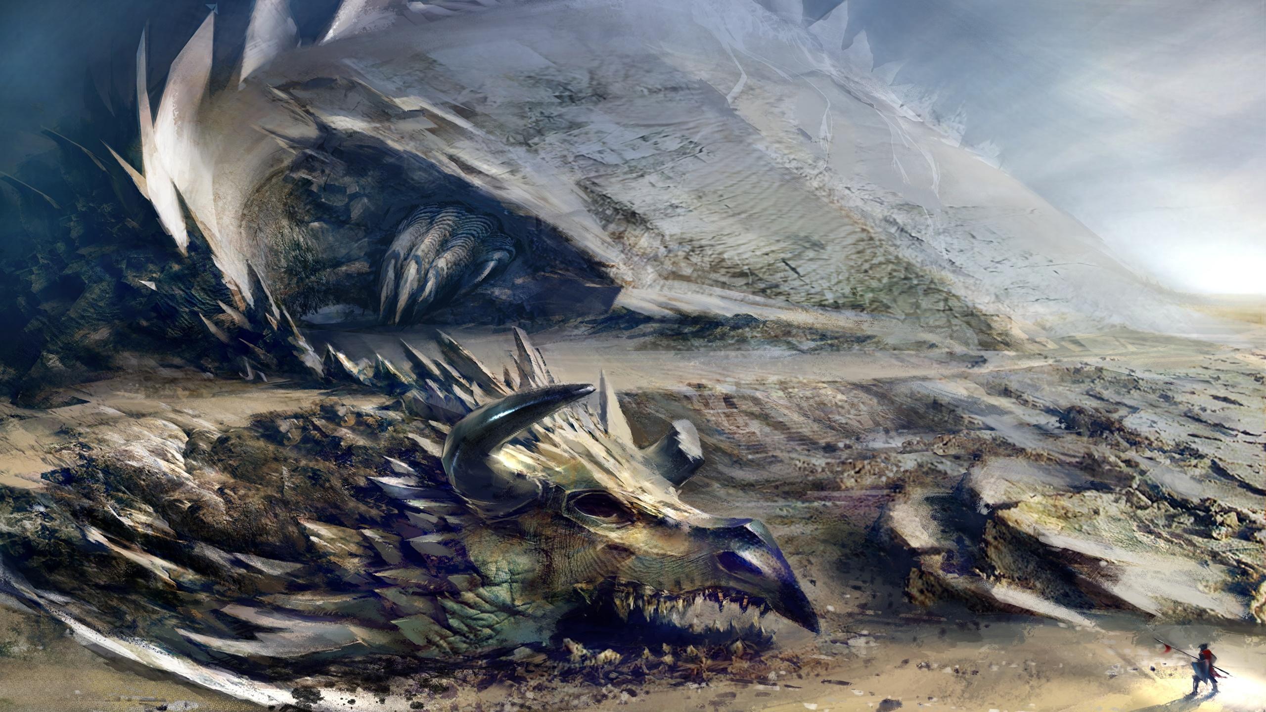 Photo Guild Wars Guild Wars 2 Dragons Fantasy Vdeo Game 2560x1440