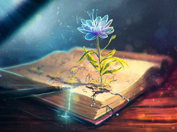 Fonds d'ecran Livre Fleurs Fantasy télécharger photo