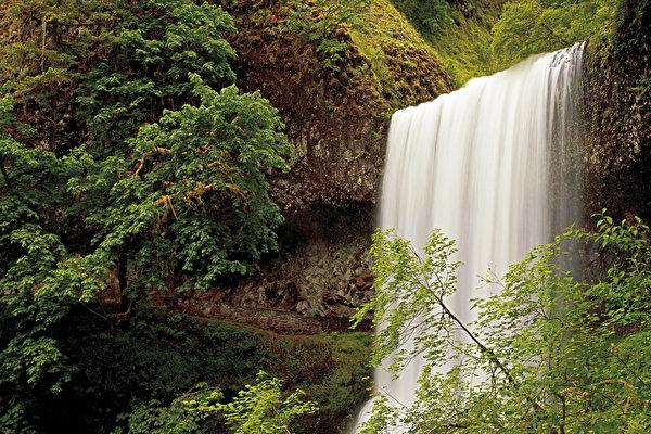 600x400 USA Chute d'eau Silver Falls Oregon Arbres États-Unis, cascade Nature