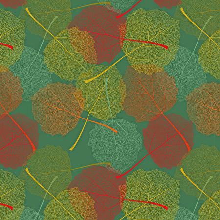 Fotos Blatt Textur Herbst 450x450 Blattwerk