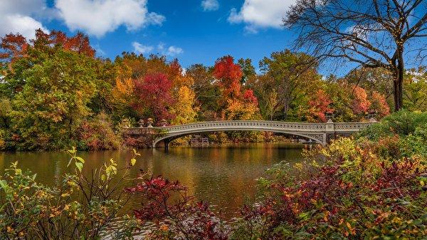Papel de Parede Desktop Outono Pontes EUA Panorama Nova Iorque Naturaleza