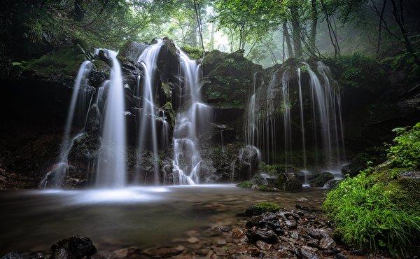 Photos Nature Waterfalls Moss Grass Stones 600x370 stone