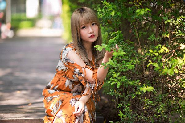 Fotos Bokeh Mädchens Asiaten Starren Kleid 600x400 unscharfer Hintergrund junge frau junge Frauen Asiatische asiatisches Blick